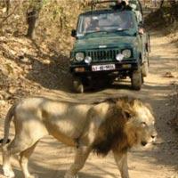 Ahmedabad - Lothal - Velavadar National Park - Bhavnagar - Palitana - Talaja - Diu - Sasangir - Junagadh - Gondal - Kutch - Ahmedabad