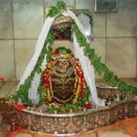 Gorakhpur - Jhansi - Indore - Ujjain - Om Kaleshwar - Saidham Shirdi - Nasik - Trimbakeshwar - Bhimashankar - Gorakhpur
