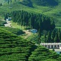 Gorakhpur - Lumbini - Pokhara - Manakamana - Kathmandu - Janakpur - Gorakhpur.