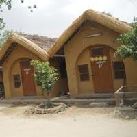 Gokul - Mathura - Jatipura - Nathdwara - Udaipur
