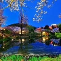 Seoul - Jeju Island