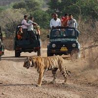 New Delhi - Agra - Khajuraho - Bandhavgarh - Kanha - Nagpur - Mumbai