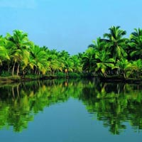 Cochin - Munnar - Thekkady - Kumarakom - Alleppey - Kovalam - Trivandrum