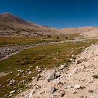 Delhi - Manali - Keylong - Jispa - Palamo - Zanskar Sumdo - Chhumiknakpo - Lakong - Kargyak - Purne - Mune - Padum - Rangdum - Suru Valley - Kargil – Mulbekh - Leh - Delhi
