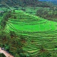 Ranikhet - Kausani - Chaukori - Almora - Nainital