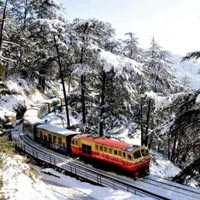 Delhi - Shimla - Kufri - Chail - Delhi