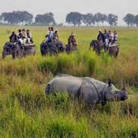 Guwahati - Pobitora Wildlife Sanctuary - Manas National Park - Nameri National Park - Kaziranga National Park - Guwahati
