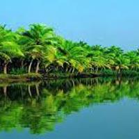 Chennai (Madras) - Mahabalipuram- Thanjavur - Swamimalai - Thanjavur - Trichy