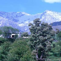 Shimla - Manali - Dharamsala - Dalhousie - Amritsar - Chandigarh
