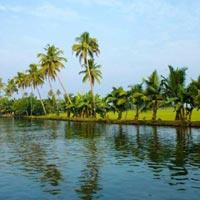 Cochin - Munnar - Alleppey - Thekkady
