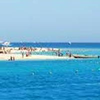 Cairo - Alexandria - Cairo - Aswan - Nile Cruise - Edfu - Luxor - Hurghada - Cairo