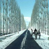 Jammu - Katra - Patnitop - Pahalgam - Srinagar