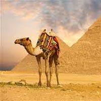 Luxor - Edfu - Gabal El Silsilah - Aswan