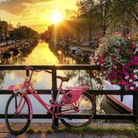 Amsterdam City tour - Diamond workshop - Paris City tour - River Seine - Eiffel Tower - Cheese market of Alkmar - Volendam - Ghent