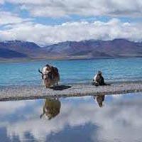 Katra - Srinagar - Gulmarg - Kargil - Leh Ladakh - Pangong Lake