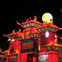 China Town - Jurong Bird Park - Sin City Tour