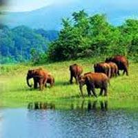 Cochin - Munnar - Thekkady - Kottayam - Trivandrum - Kanyakumari - Pune