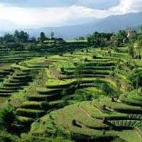 Kathmandu - Pokhara - Nagarkot