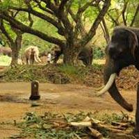 Kerala - Kanniyakumari - Rameswaram