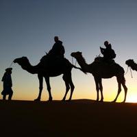 Moroccan Desert - Marrakech