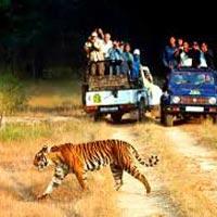 Delhi – Nainital – Ranikhet – Corbett – Mussoorie – Delhi