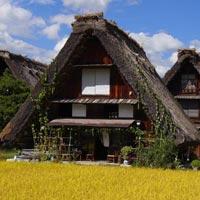 Tokyo - Mt. Fuji - Takayama - Shirakawago Village - Kanazawa - Kyoto - Nara Etc.