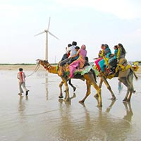 Somnath - Sasan Gir - Junagadh - Porbandar - Jamnagar - Dwarka