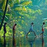 Cochin - Munnar - Alleppey - Kumarakom - Kovalam