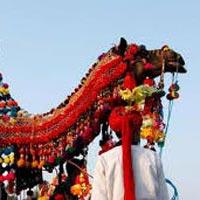 Delhi – Agra – Fatehpur Sikri – Jaipur – Jodhpur – Ranakpur – Udaipur – Pushkar – DelhI