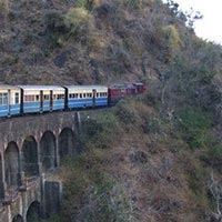 Shimla - Kufri - Chail - Naldehra - Shilong Bagh