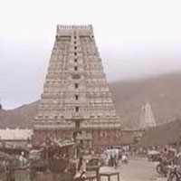 Book Srisailam Tour Id 7066 2 Days 1 Nights Tour Package