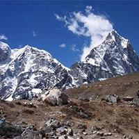 Kathmandu - Pokhara - Tansen(Palpa) - Lumbini - Chitwan National Park - Daman - Bhaktapur - Patan