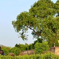 Allahabad - Sitamarhi - Vindhyachal - Bodhgaya