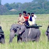Guwahati - Jorhat - Majuli - Sibsagar