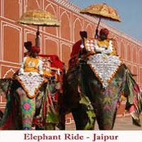 New Delhi - Jaipur - Ranthambore- Sawai Madhopur - Bharatpur - Fatehpur Sikri - Agra - Khajuraho - Bandhavgarh - Kanha - Jabalpur