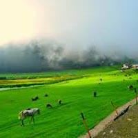 Pathankot - Dalhousie - Khajjiar - Pathankot