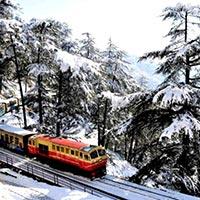 Shimla - Kufri - Fagu