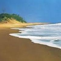 Kuldiha Jungle - Chandipur