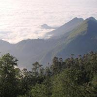 Coimbatore - Ooty - Coonoor - Kodaikanal - Munnar - Periyar - Kumarakom - Alleppey - Cochin