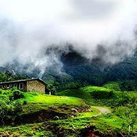 Attukad Waterfalls - Munnar Sightseeing - Mattupetty Dam Visit - Blossom Park - Tea Factory - Cochin City