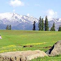 Srinagar - Gulmarg - Sonamarg - Pahalgam