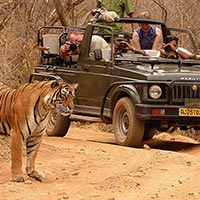 Delhi - Agra - Jaipur - Ranthambore - Bundi - Chittaugarh - Udaipur