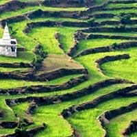 Delhi - Nainital - Ranikhet - Kausani - Almora - Bhimtal