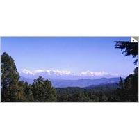 Paro - Almora - Binsar - Bageshwar - Ranikhet - Kausani - Delhi