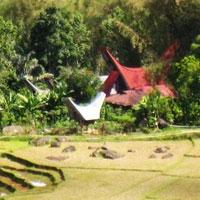 Makassar - Bira Beach - Kajang Tribe - Lake Tempe -Sengkang - Tana Toraja