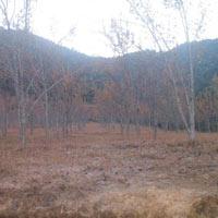 Thangkot - Chitlang - Markhu - Kulekhani - Daman