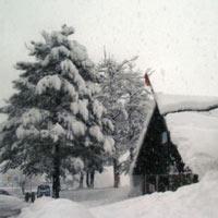 Shimla - Rampur - Sarahan - Sangla - Kalpa - Kinner Kailash