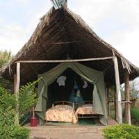 Masai Mara - Lake Nakuru - Lake Naivasha