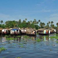 Cochin - Munnar - Alleppey