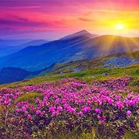 Haridwar - Joshimath - Govindghat - Ghangaria - Valley of Flower - Hemkund Sahib